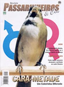 Revista número 026