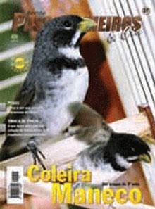Revista número 037
