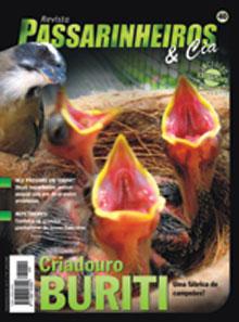 Revista número 040