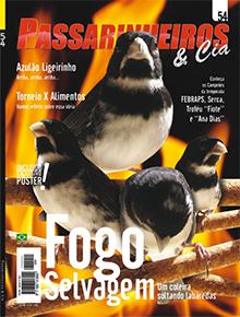 Revista número 054