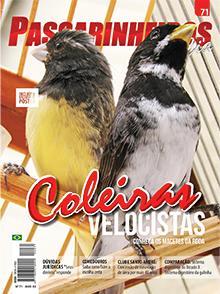 Revista número 071