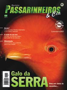 Revista número 041