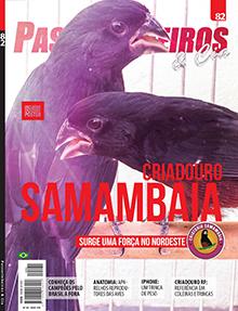 Revista número 082