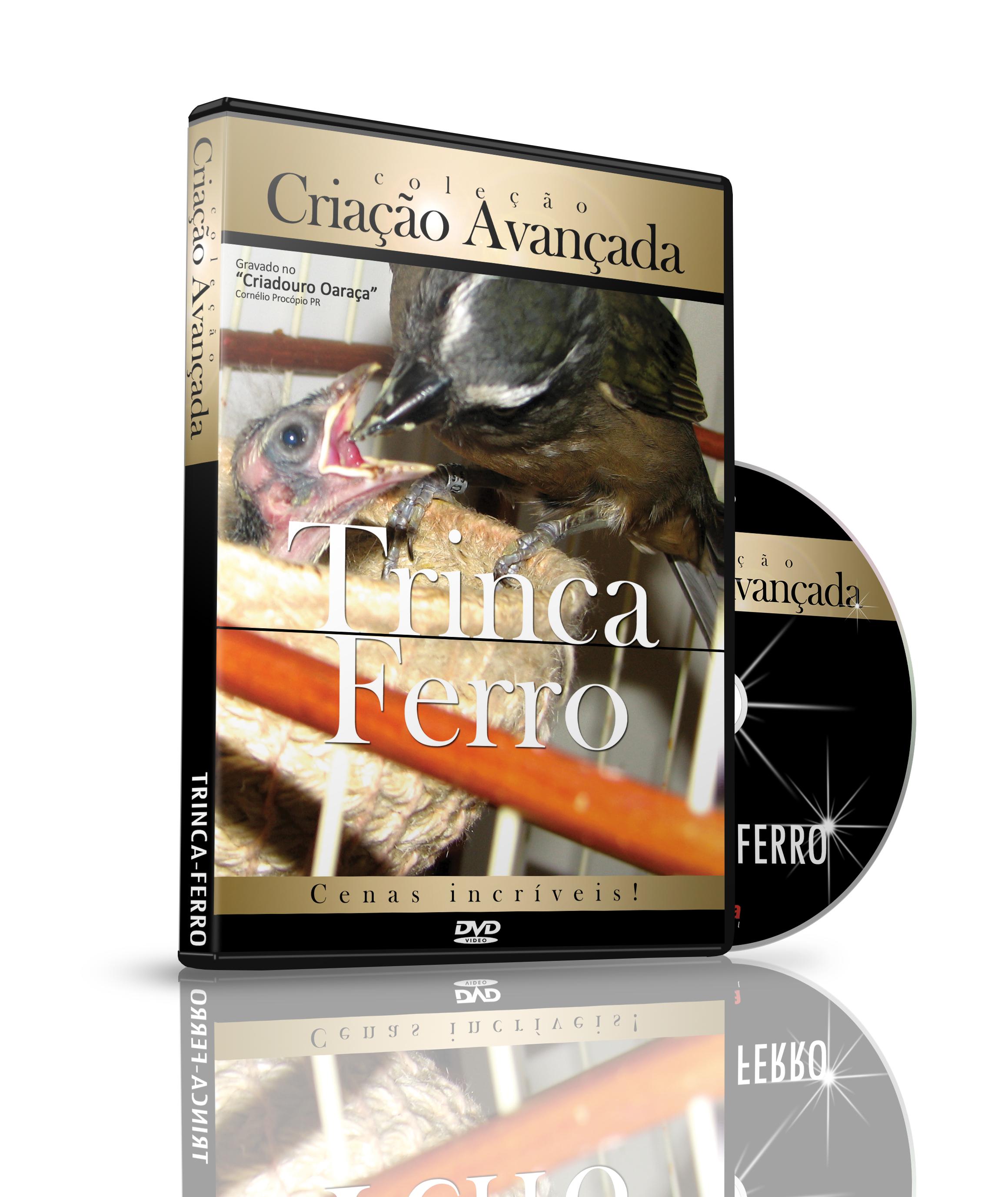 DVD -  Criação Avançada - Trinca Ferro