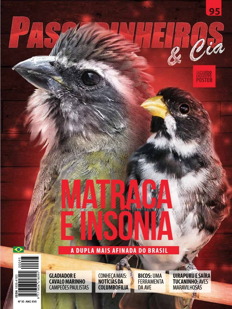 Revista número 095