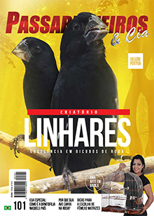 Revista número 101