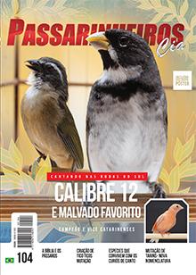 Revista número 104