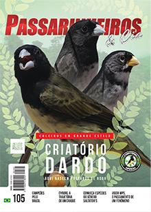 Revista número 105