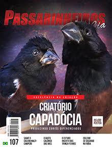 Revista número 107