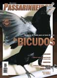Revista número 031