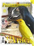 Revista número 047