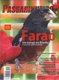 Revista número 066
