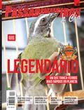 Revista número 081