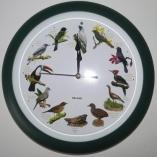 Relógio modelo 2 - Verde