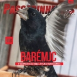Revista número 096